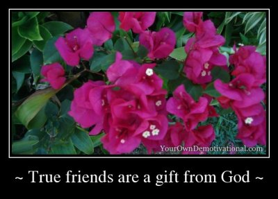 TRUE FRIENDS ARE A GIFT FROM GOD